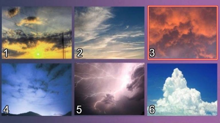 4-izberete-nebo-koe-najmnogu-vi-se-dopagja-i-otkrijte-go-vashiot-skrien-karakter-www,kafepauza.mk_