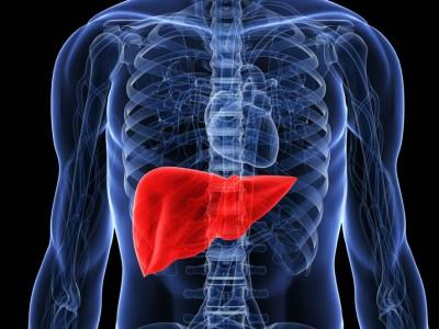 6 знаци дека вашиот црн дроб не може повеќе да го издржи вашиот начин на живот
