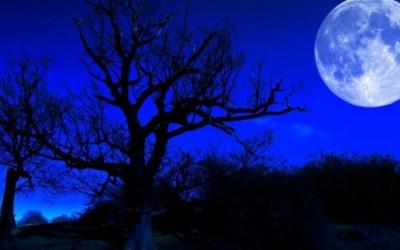 Какво влијание ќе има денешното помрачување на месечината на хороскопските знаци?