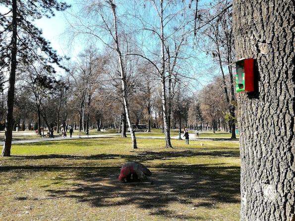 """Првоодделенците од ОУ """"Коле Неделковски"""" во здружена иницијатива со Алпско Млеко: """"Амбалажниот отпад може да има втор живот"""""""