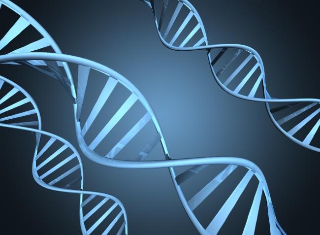 Научниците побиле 12 заблуди за ракот