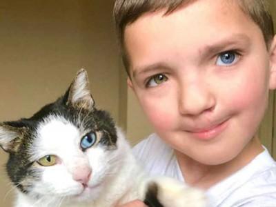 Малтретирано 7-годишно момче со различни очи и зајачка уста наоѓа мачка која е иста како него!