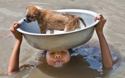 Трогателни фотографии што ќе им ги насолзат очите дури и на најсилните луѓе