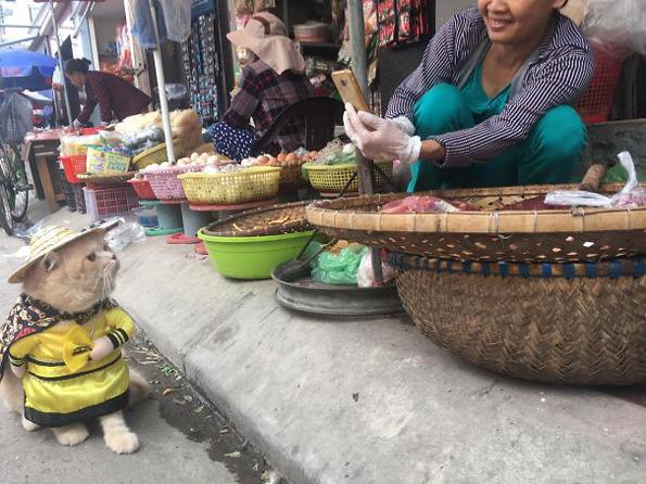 Запознајте го најслаткиот продавач на риба во Виетнам кој го освои Интернетот