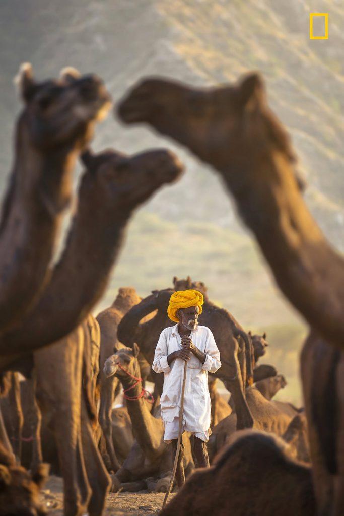 Некои од најдобрите фотографии за натпреварот на National Geographic за патувачки фотографии