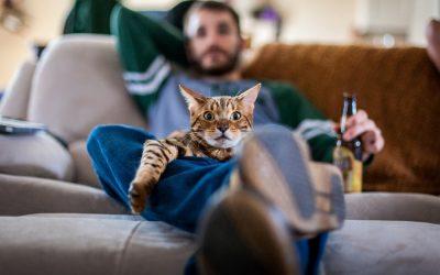 Зошто луѓето сакаат да гледаат ТВ во друштво на милениците?