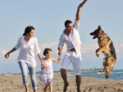 Имате куче, многу пријатели и среќен брак? Тоа е клучот за долг живот!