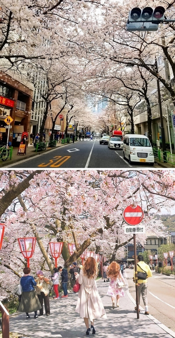 16 зачудувачки факти за Јапонија, кои ќе ги восхитат оние коишто никогаш не ја посетиле