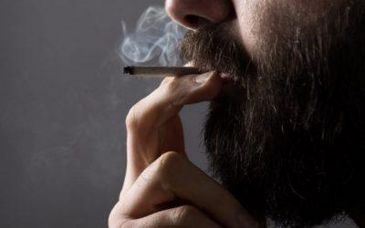 Алкохол наспроти марихуана: Што е навистина полошо за вашето здравје?