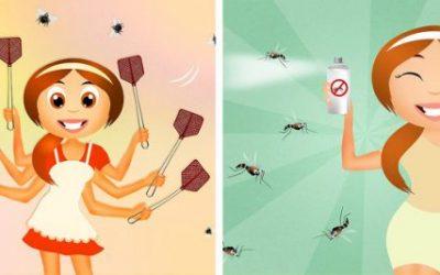 Решенија за 8-те најчести проблеми во лето