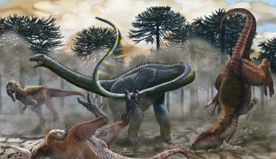 Научниците сметаат дека ќе рекреираат живи диносауруси во наредните 5 до 10 години