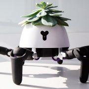 Паметна роботска саксија се движи и го лови Сонцето, за да им овозможи доволно светлина на растенијата