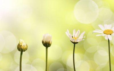 7 знаци дека сте на работ на целосна трансформација