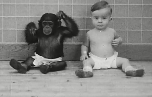 9 вознемирувачки експерименти со деца