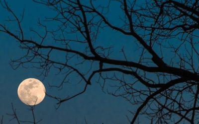 Ритуал за исполнување на желбите: Денешната полна месечина носи големи промени