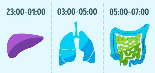 10 едноставни но чудни навики што ќе ви помогнат да живеете подолго