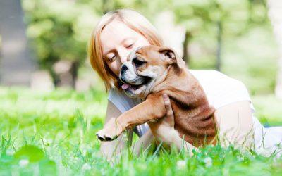 Пет работи кои можете да ги направите за безбедноста на вашето куче