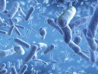 Дали пробиотиците се навистина корисни?