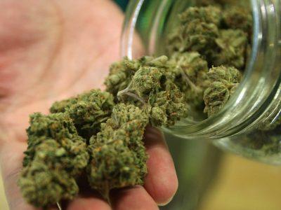 Истражување: Младите кои се откажале од марихуана имале подобра меморија за една недела