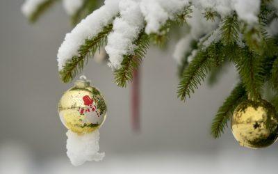 """Нашиот мозок има """"центар за празници"""" кој објаснува зошто ги сакаме празниците"""