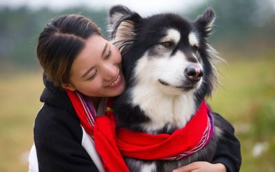 Што може да ве научи вашето милениче за животот, љубовта и сè останато?