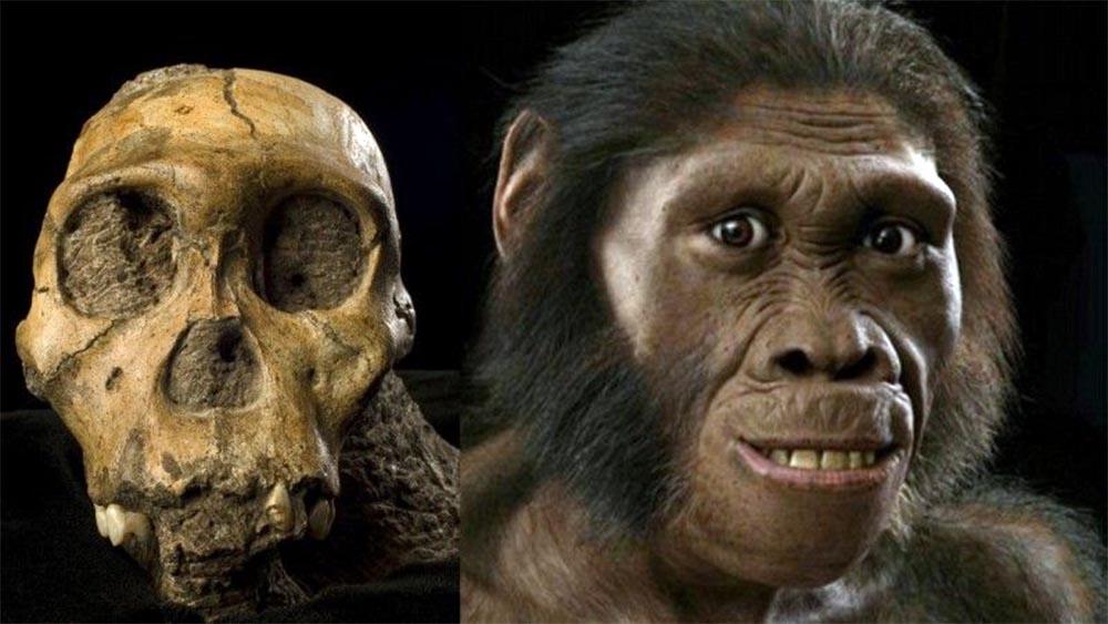 Како се разликува модерниот човек од нашите предци?