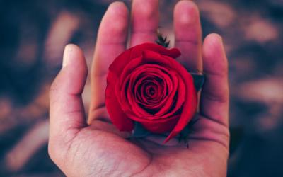 Најповолни периоди за љубов во 2019-та година за секој хороскопски знак