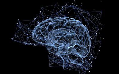 Научниците им ги поврзале мозоците на тројца луѓе овозможувајќи им да споделуваат мисли
