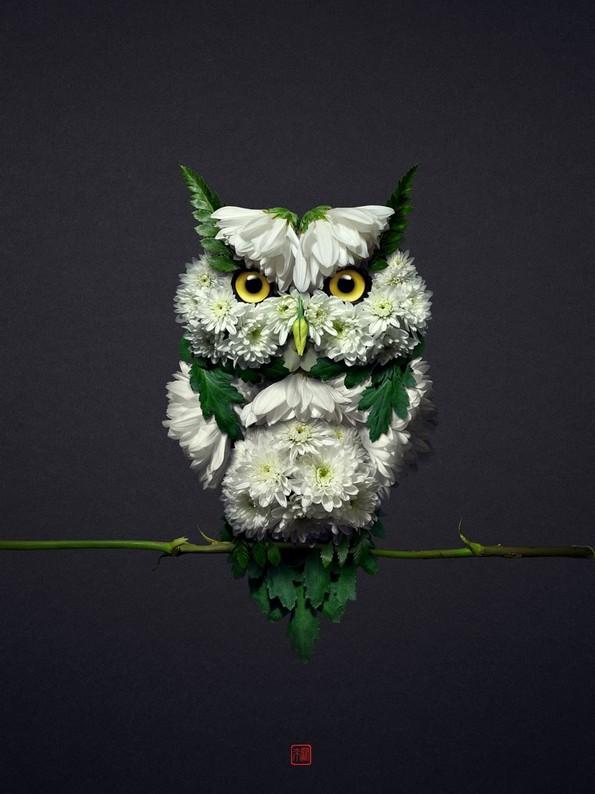 Портрети од животни направени со цветни аранжмани