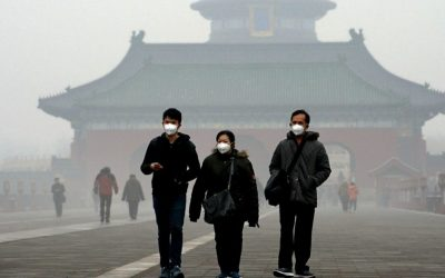 5 позитивни приказни за борбата против загадувањето од минатата година