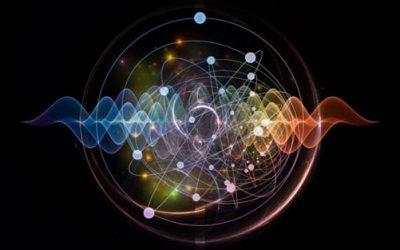 10 социјални и биолошки експерименти со навистина интересни резултати
