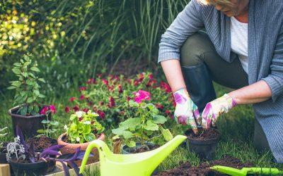Работењето со земја ги прави луѓето посреќни