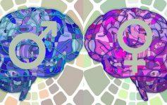 Во повеќето случаи, женскиот мозок е помлад од машкиот