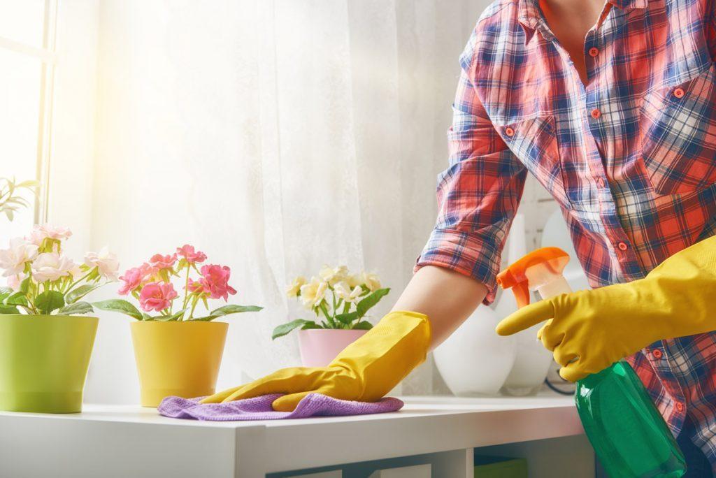 Како да го одржите домот чист во текот на пролетта?