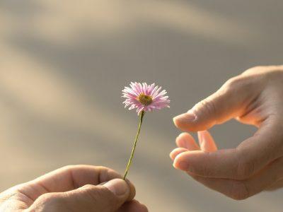 Корисници на Твитер ја споделуваат приказни за добрината што ја добиле од странци