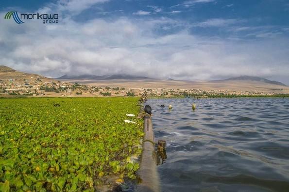Научник од Перу открил генијален начин за прочистување на езерата