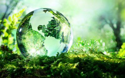 Како да станете еколошки свесна личност?