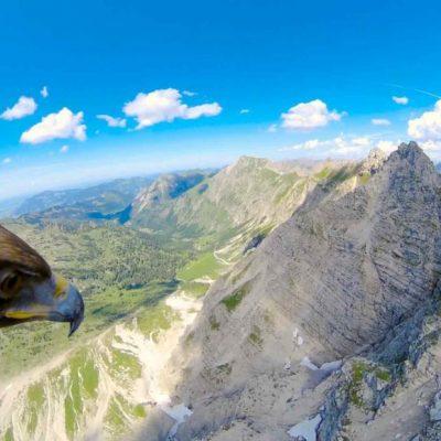Поглед кон Алпите од птичја перспектива