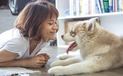 5 причини зошто вашето милениче ве прави среќни и здрави