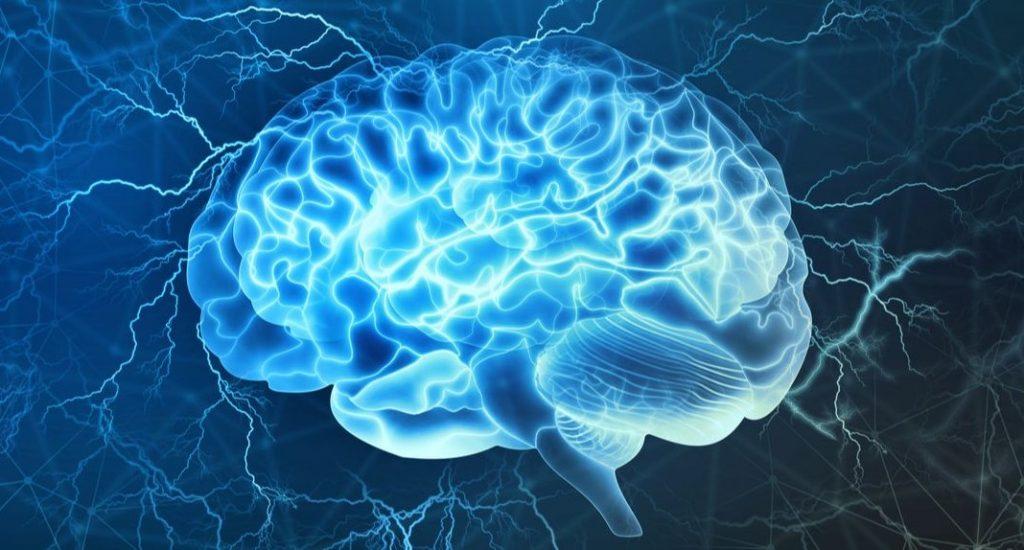 Тест: Дали вашиот мозок е постар или помлад од вашето тело?