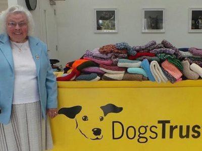 89-годишна баба сплела 450 ќебиња за бездомни кучиња