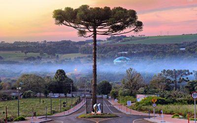 Моќни фотографии коишто покажуваат почит кон природата нè прават горди на човештвото