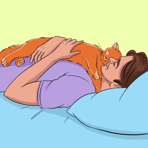 13 начини со кои вашата мачка покажува дека ве сака