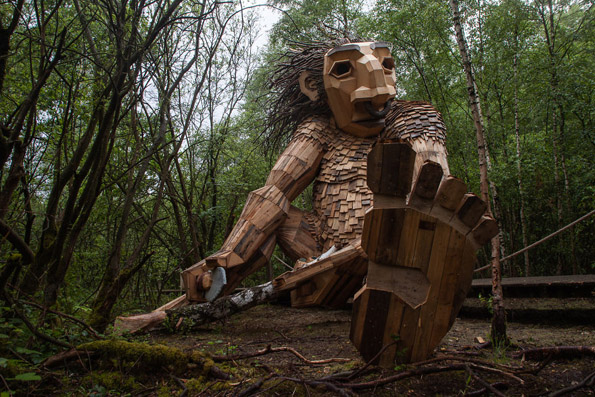 Фасцинантни дрвени џинови во Белгиската шума