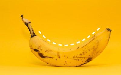 Зошто бананите растат свиткани?