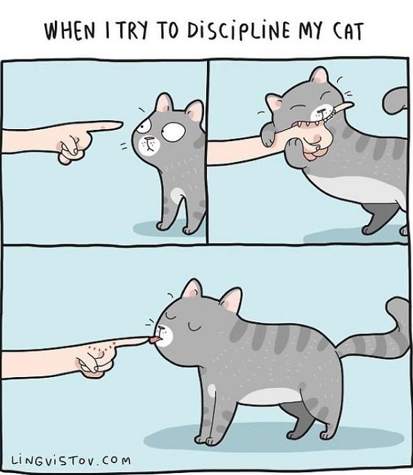 Илустрации во кои ќе се пронајде секој кој има мачка