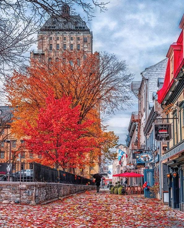 Како изгледа есента низ светот?