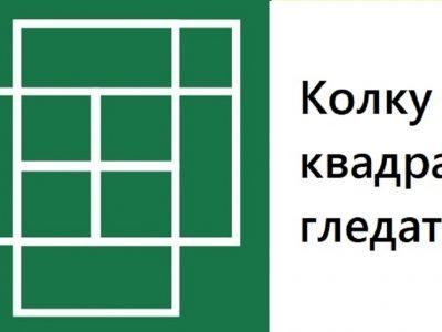 Колку квадрати гледате на сликата?