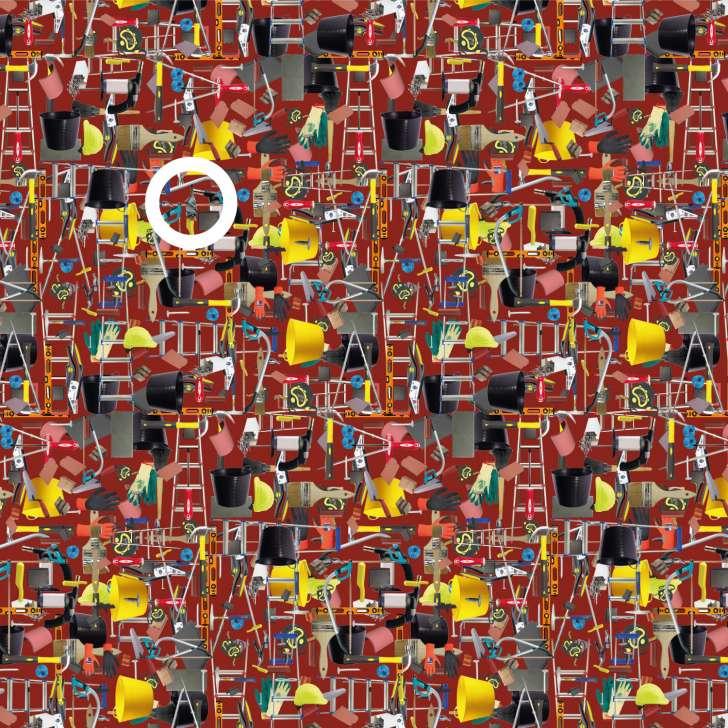 Можете ли да го пронајдете лилјакот на сликата - решение