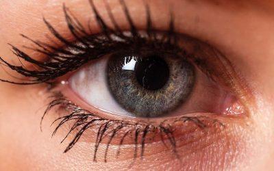 Што сè може да се види во очите?